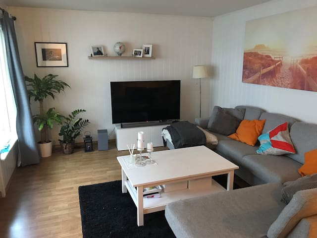 Nice apartment 5 minutes from Oslo city center