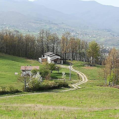 Albareto的民宿