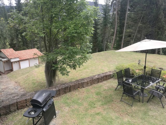 4BR beautiful cabin in a forrest! >7000m2 land!