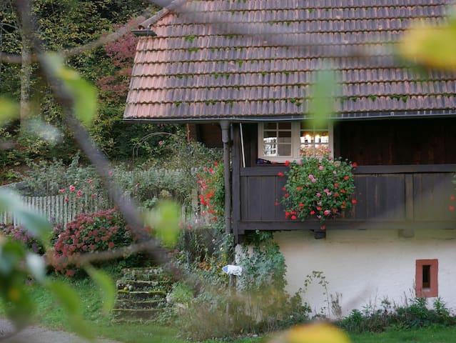 Zell am Harmersbach的民宿