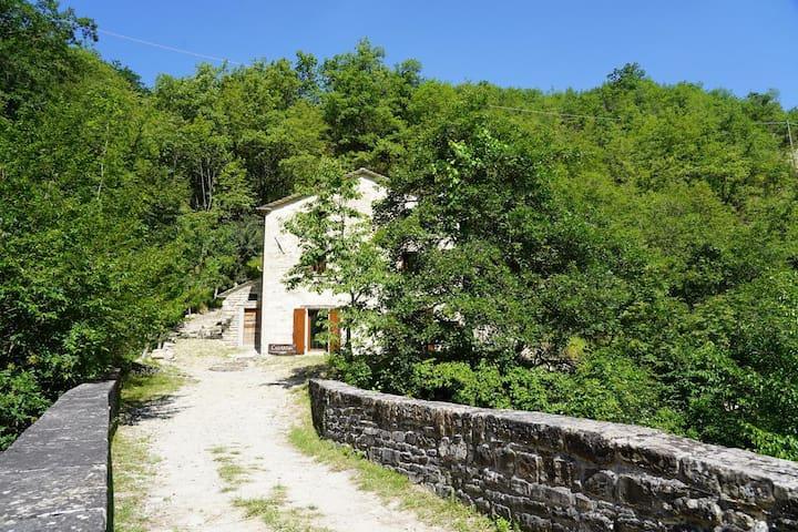 Bagno di Romagna的民宿
