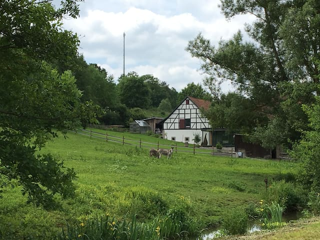 Mellrichstadt的民宿