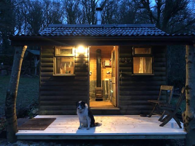 Outdoor Cabin, quiet, woodland walks. Dawn chorus