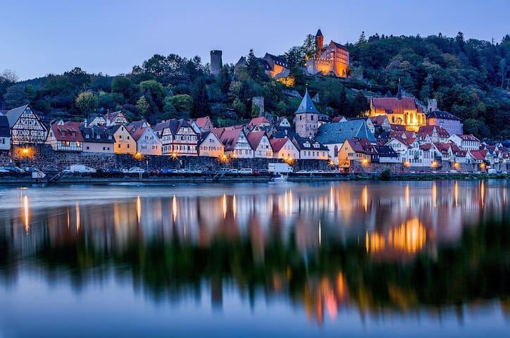 Hirschhorn (Neckar)的民宿
