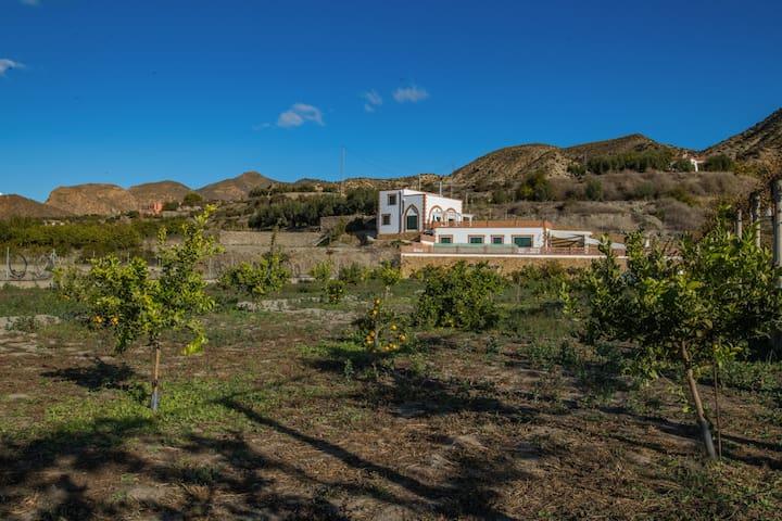 Santa Cruz de Marchena的民宿