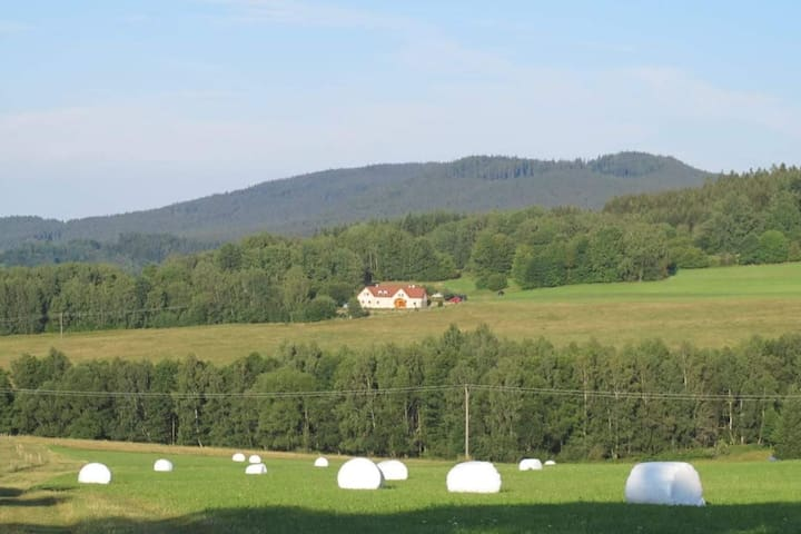 Benešov nad Černou的民宿