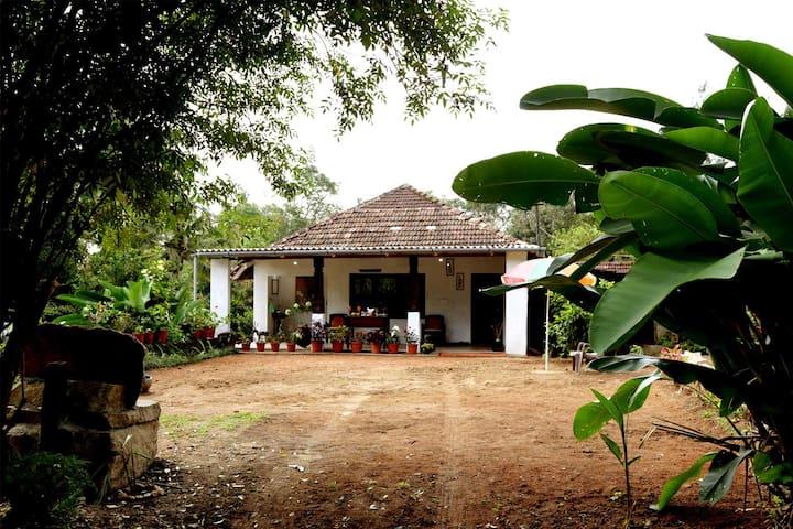 Chikmagalur的民宿