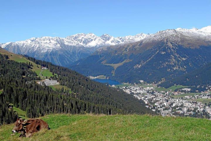 Davos Dorf的民宿