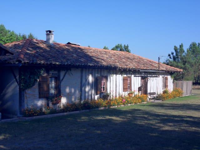 Ychoux的民宿