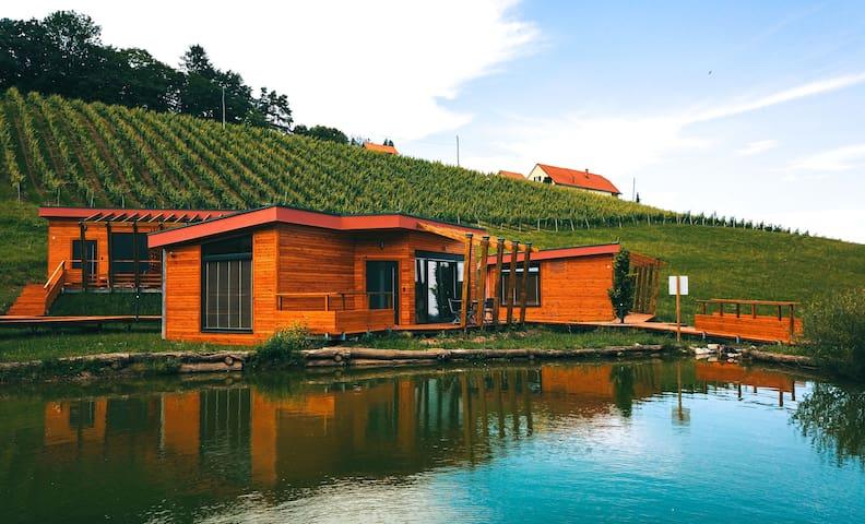 Pesnica pri Mariboru的民宿