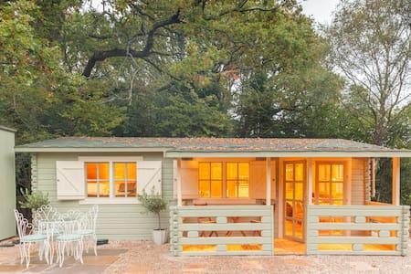 Family friendly sunny Log Cabin