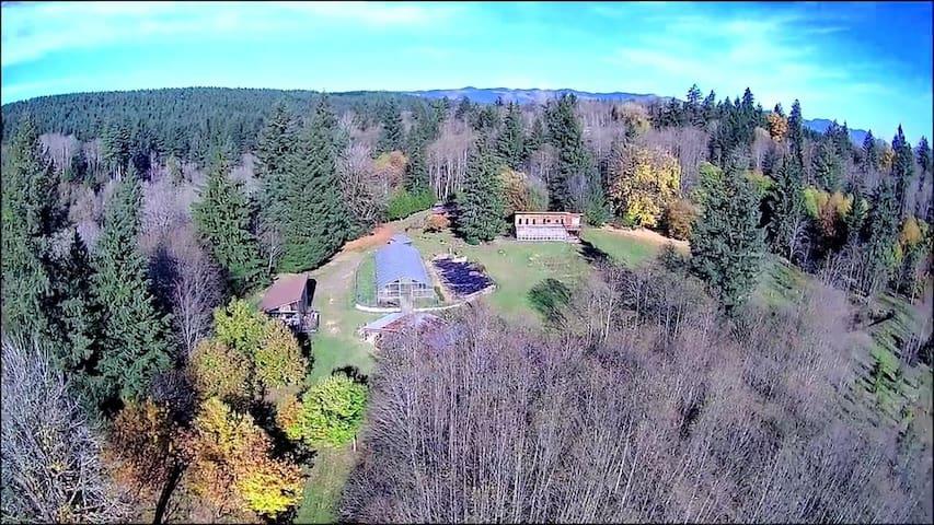 Shady Grove Retreat