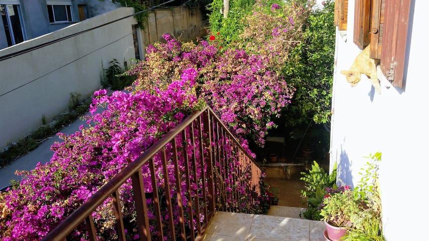 Appartement niveau de villa avec un grand jardin.