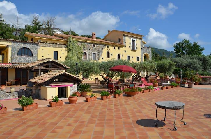 Falconara Albanese的民宿