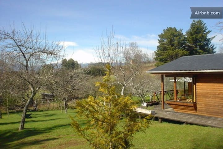 比亚里卡(Villarrica)的民宿