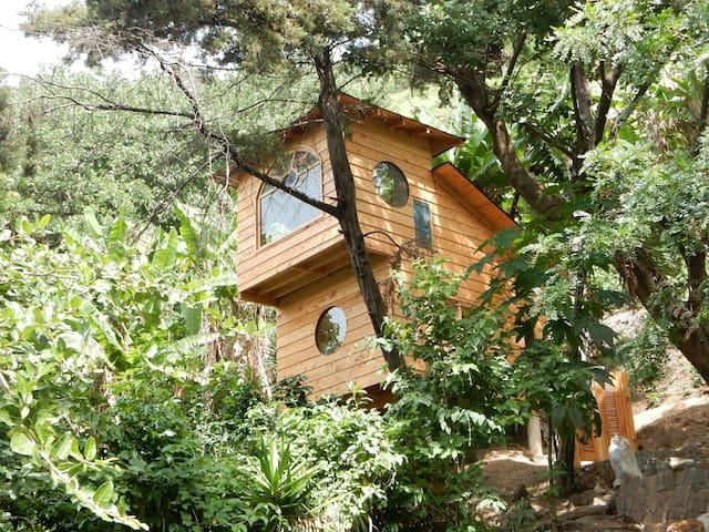 Santa Cruz la Laguna的民宿