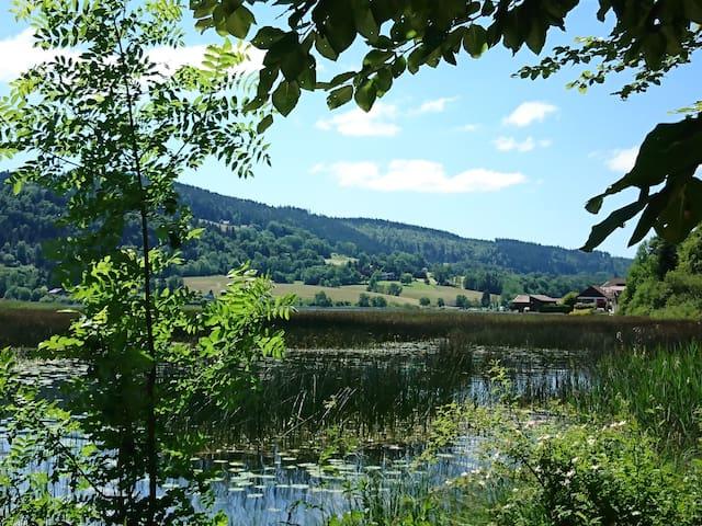 Oye-et-Pallet的民宿