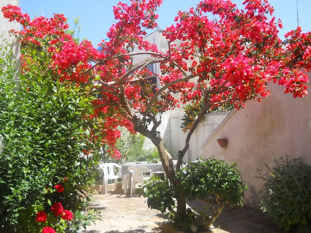 The flower garden, colors, perfumes, sea