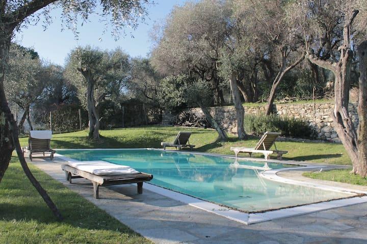 Villa Francesca: a dream come true