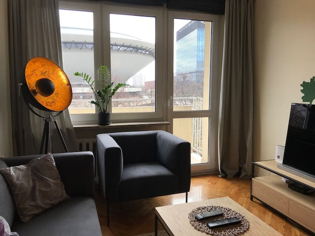 Spacious apartment in the center of the city