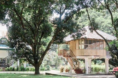 Kubo, Your Charming Modern Native House!