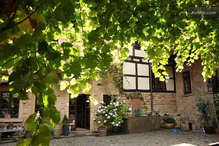 Erleben Sie die charmante Pfalz
