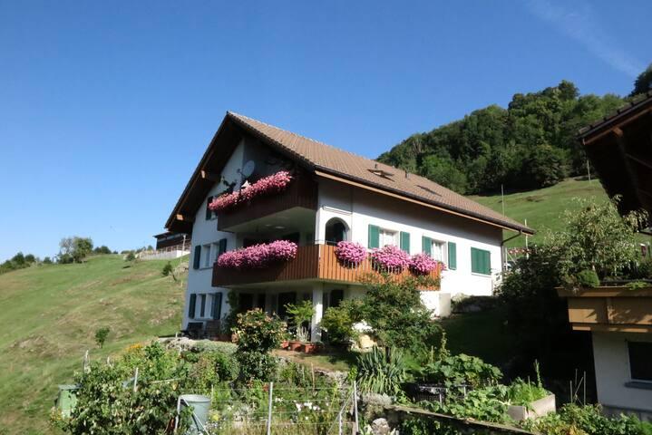 Illgau的民宿