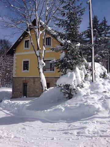 Bruck-Mürzzuschlag的民宿