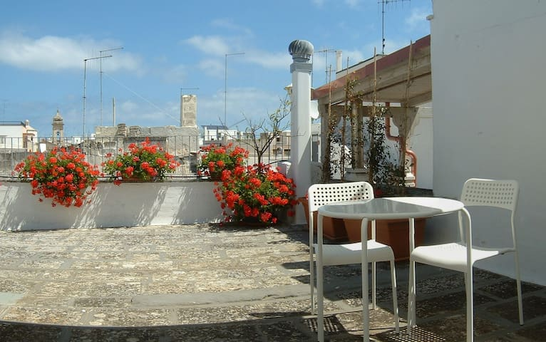 Polignano a Mare Red Flowers house with terrace