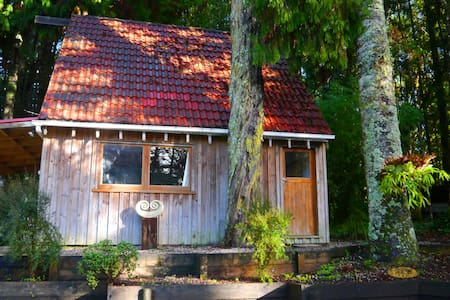 Kauri Cottage - Native Bush Retreat