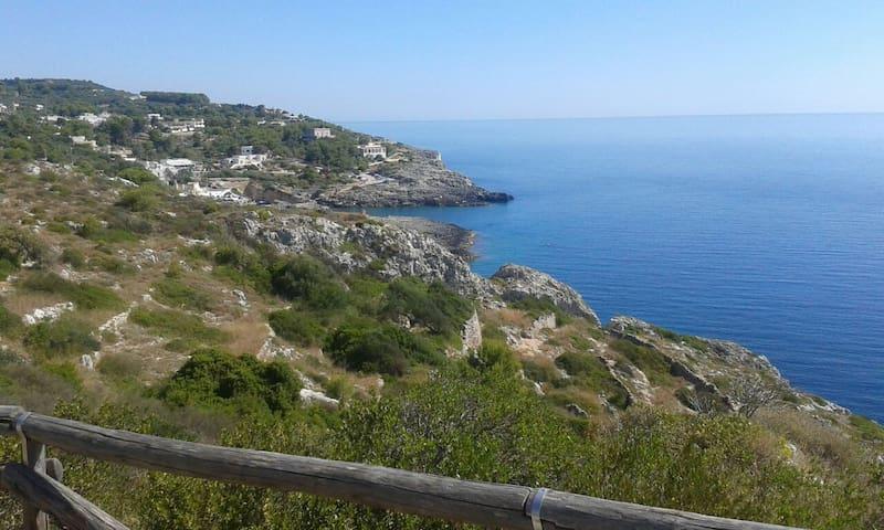 Marina di Novaglie的民宿