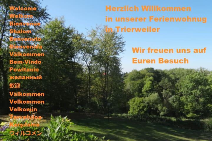 Trierweiler的民宿
