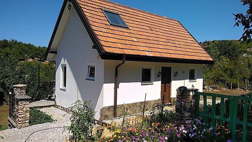 Shumnatitsa的民宿