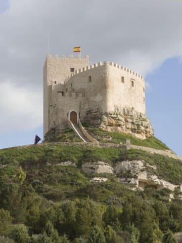 Curiel de Duero的民宿