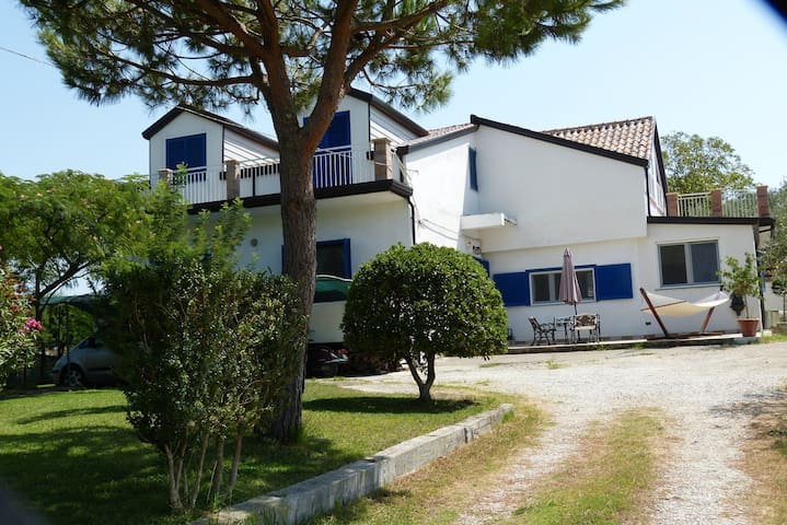 Montecorvino Rovella的民宿