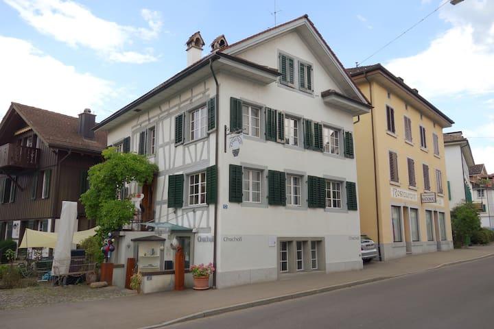Richterswil的民宿