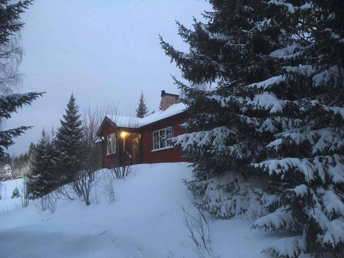 Södra ÅRE fjällen, Edsåsdalen