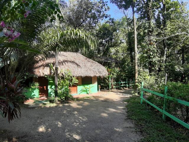 Palenque的民宿
