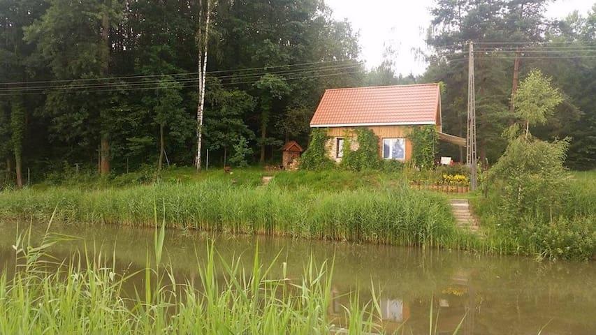 Kościelnik的民宿