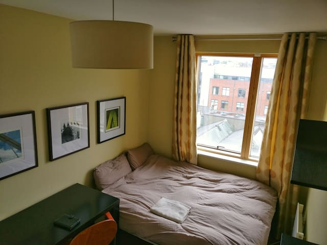 Double bed room - Next to the Trinity college