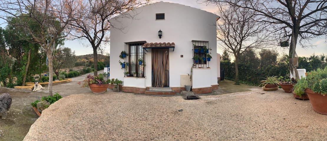 Estepa的民宿