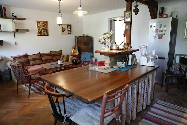 Vintage & Cozy Apartment in the Center of Varazdin