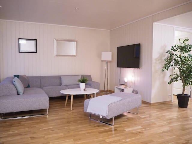 Spacious Modern City Center Apartment