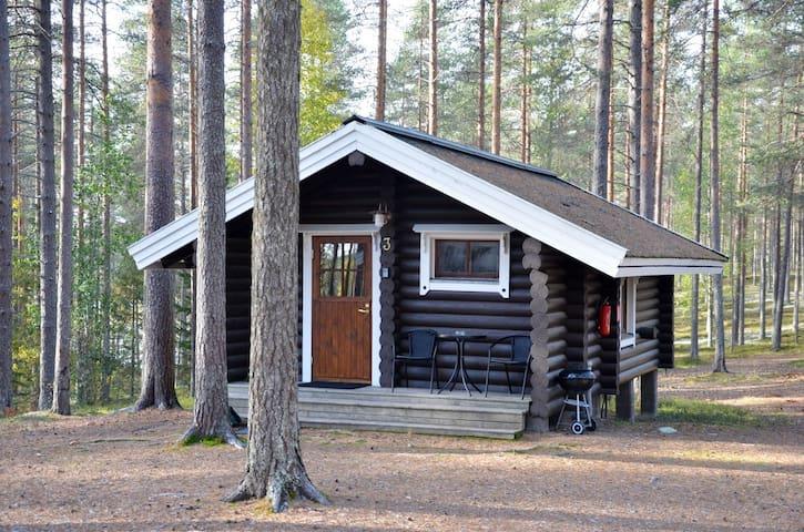 Ristijärvi的民宿