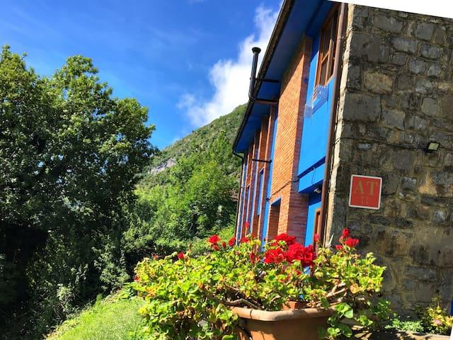 San Ignacio, Ponga的民宿