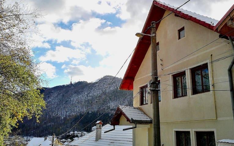 布拉索夫(Brașov)的民宿