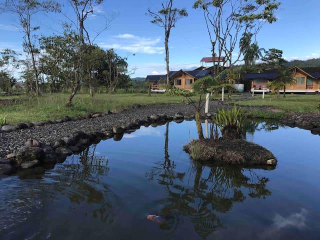 Amazon rest home