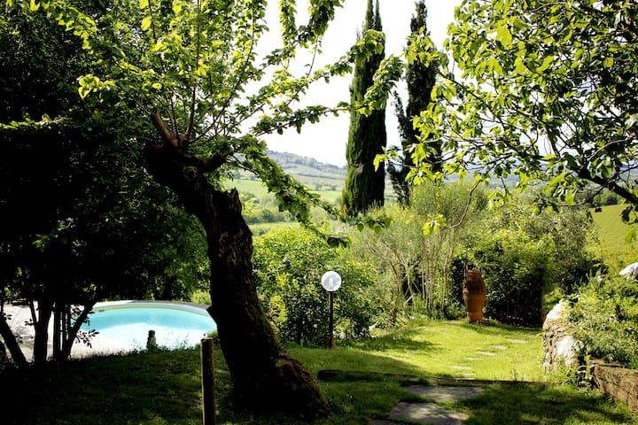 佩萨河谷圣卡夏诺(San Casciano in Val di pesa)的民宿