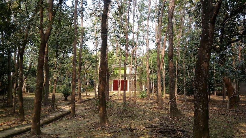 Mymensingh District的民宿