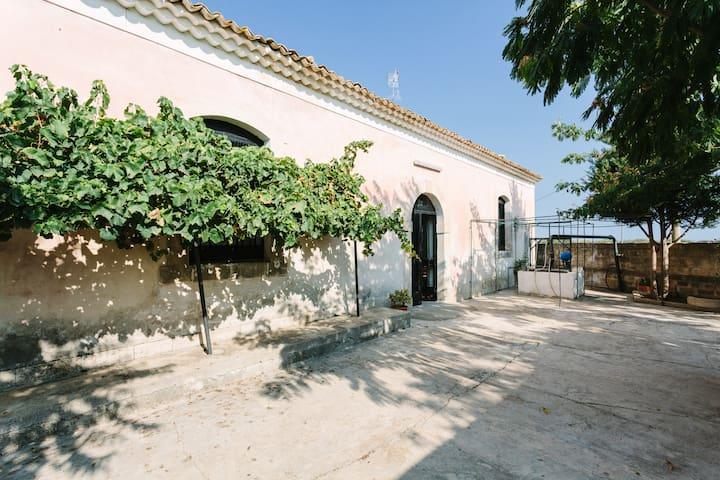 Century Old Winery